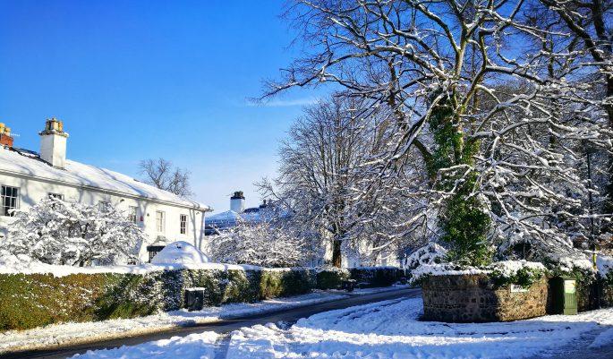Edgbaston at Winter